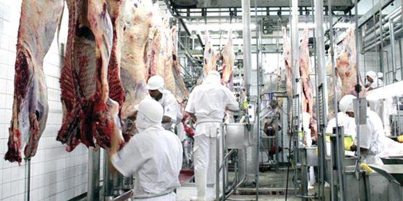 Marfrig avança após empresa anuncia joint-venture para carnes a base de vegetal