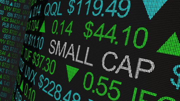 Carteira Small Caps Elite Investimentos novembro