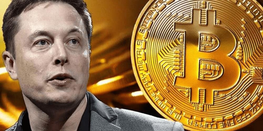 Elon Musk fala sobre Bitcoin e moeda sobe novamente