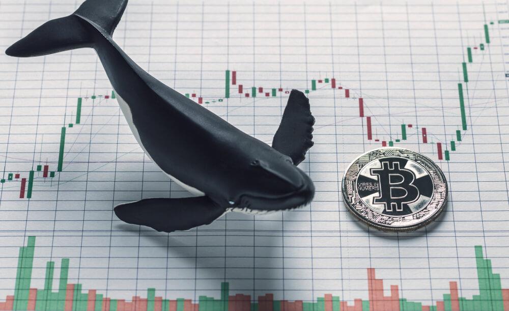 Uma das maiores baleias da história acaba de movimentar R$ 12,8 bilhões no BTC