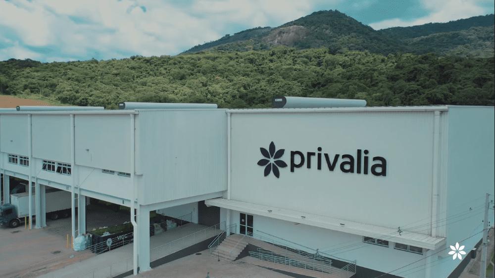 BTG Pactual faz parceria com varejista online Privalia, que estuda subscrever IPO
